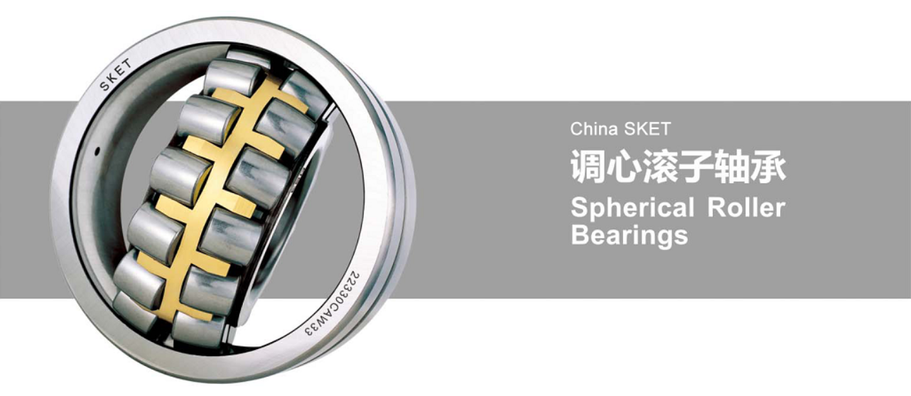 China roller bearing supplier